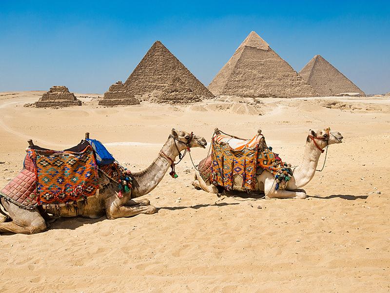 Cairo, Nilo y Petra