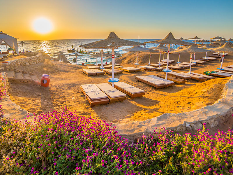Egipto y Mar Rojo - Opción Marsa Alam