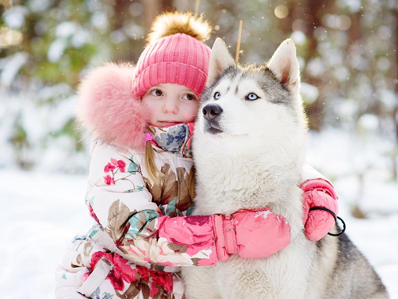 Laponia - Navidad