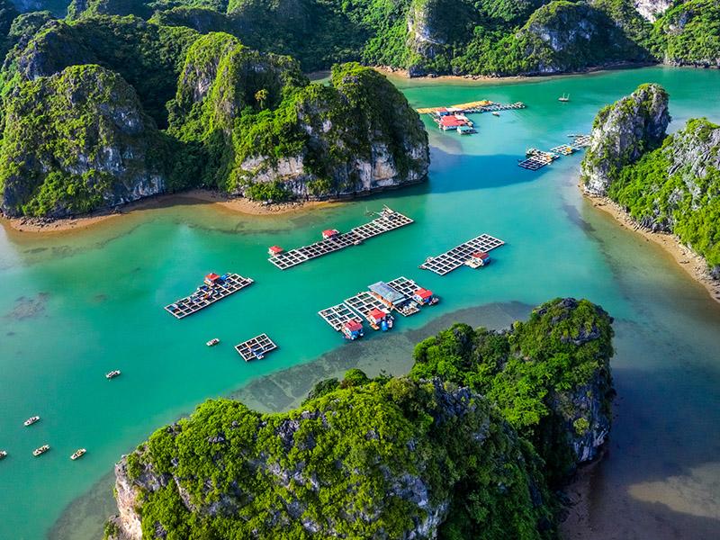 Paisajes y Tribus de Vietnam
