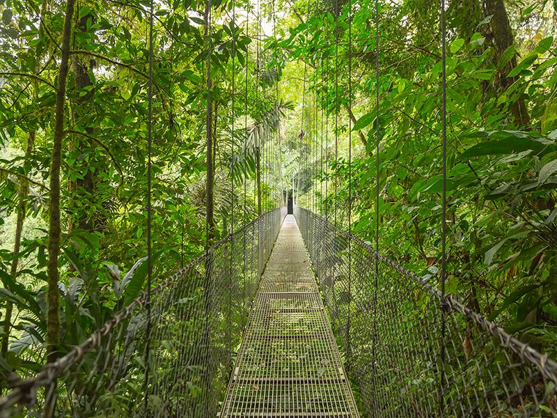 Parques Nacionales de Costa Rica - Opción Manuel Antonio