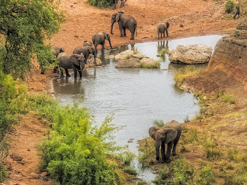 Sudáfrica Fascinante